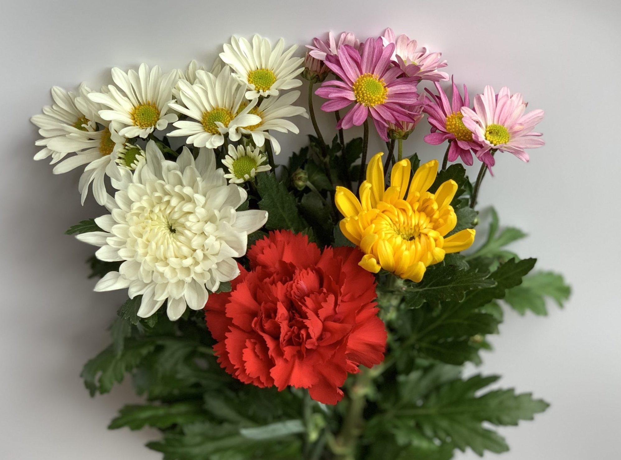 Bouquet & Bukka